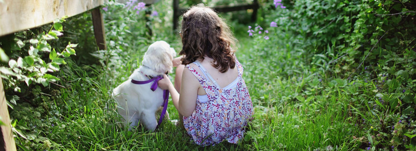 How to choose the perfect dog breed for your family